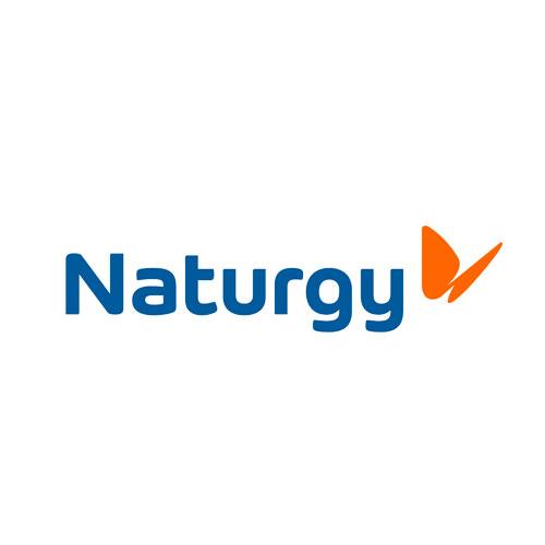 INCIPY casos de exito cliente naturgy transformacion modelo servicio logo